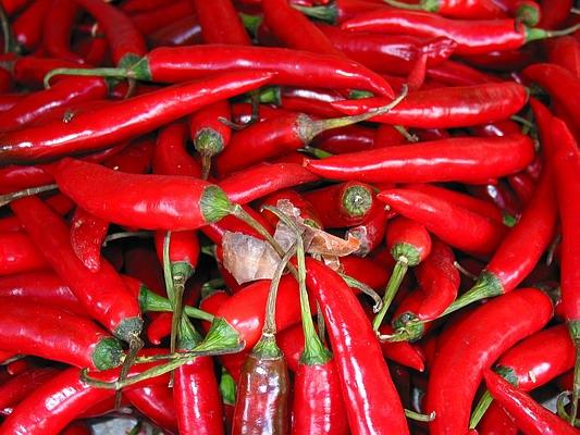 cabe merah Cabai dan Tomat Rp20 Ribu per Kg Di Madina